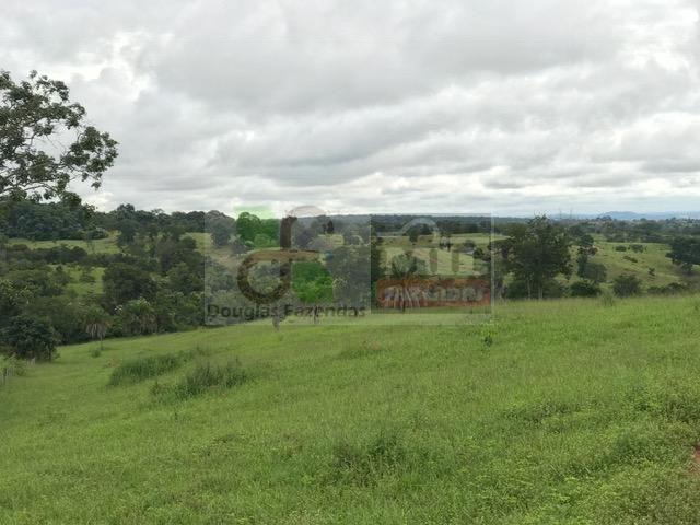 220 Alq. (Plana + Asfalto + Rio). 70 km de Goiânia - Foto 8