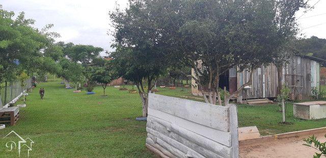 Chácara à venda com 2 dormitórios em Tomazetti, Santa maria cod:10136 - Foto 19