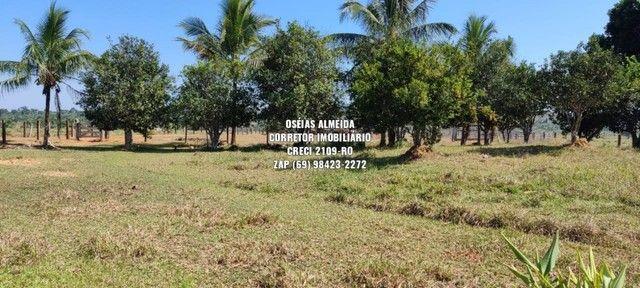 Fazenda em Machadinho - Foto 7