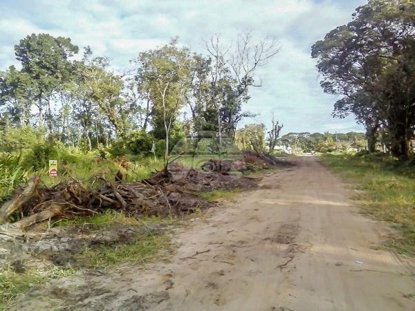 Terreno à venda em Cohapar, Guaratuba cod:125331 - Foto 9