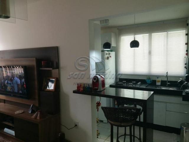 Apartamento à venda com 2 dormitórios em Maria marconato, Jaboticabal cod:V2513 - Foto 2