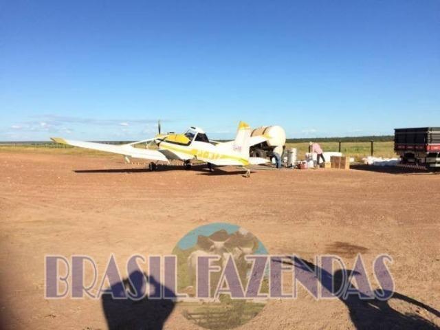 Fazenda em Barreiras. Oeste da Bahia - Foto 12