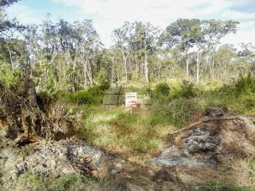 Terreno à venda em Cohapar, Guaratuba cod:125331 - Foto 2