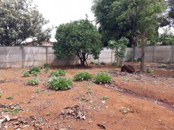 8287 | terreno à venda em vila bela, guarapuava - Foto 3