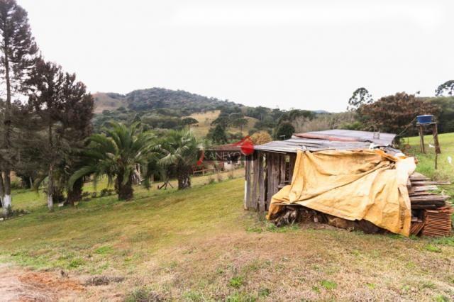 8287 | chácara à venda em guarapuava - Foto 5