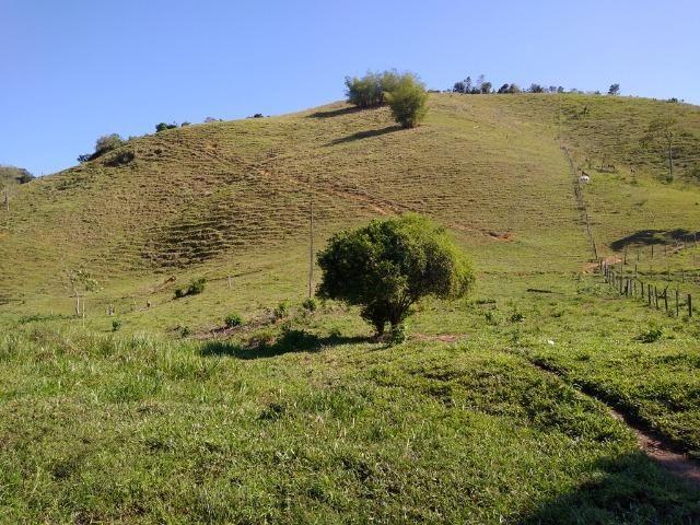 Sítio Viana 2 alqueires - Foto 6