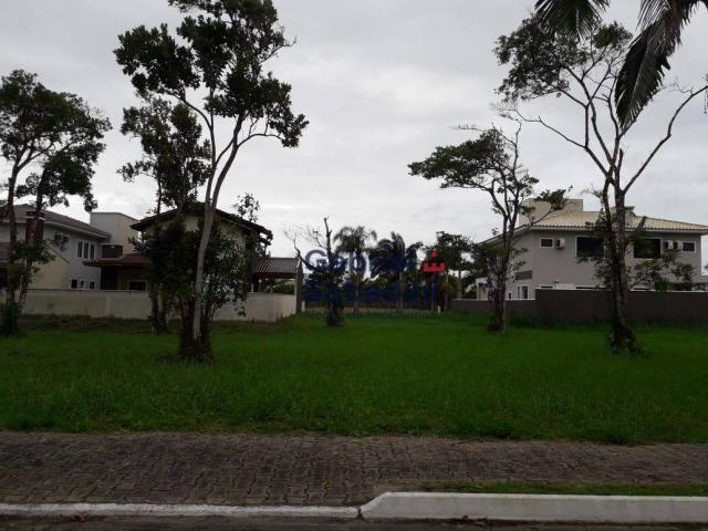 Terreno alto padrão no condomínio residencial south beach - parcelado entrada de r$ 39.000 - Foto 15