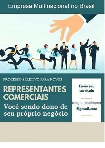 Representante Comercial - Foto 2