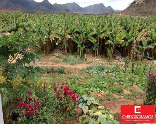 Sítio à venda em Ruy barbosa, Itaberaba cod:FA00004 - Foto 10