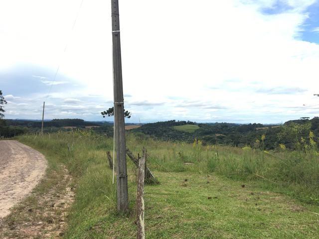 Área rural em São Bento do Sul