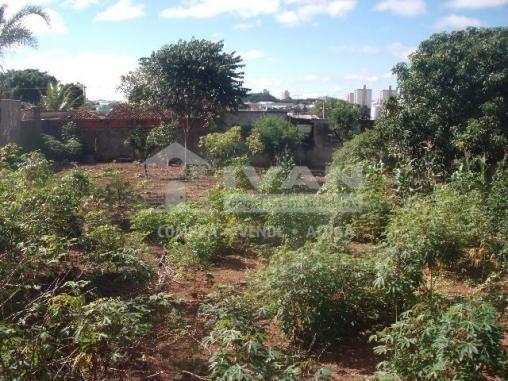 Terreno para alugar com 0 dormitórios em Presidente roosevelt, Uberlândia cod:303091 - Foto 2