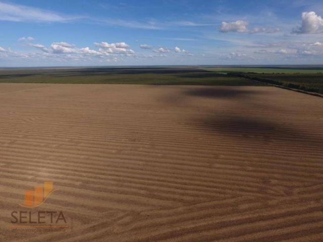 Fazenda à venda, 12650000 m² por r$ 16.000.000 - vila rica - barreiras/ba - Foto 11