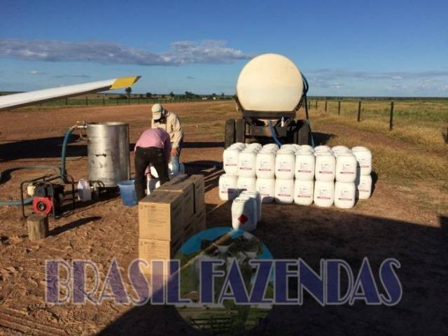 Fazenda em Barreiras. Oeste da Bahia - Foto 6