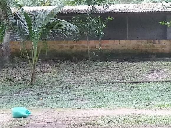 197 - Belíssimo sitio Situado No Jardim Neópolis Venda R$200.000,00 - Foto 15