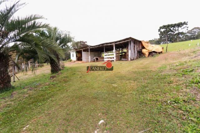 8287 | chácara à venda em guarapuava - Foto 2