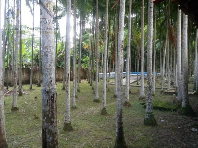 197 - Belíssimo sitio Situado No Jardim Neópolis Venda R$200.000,00 - Foto 14