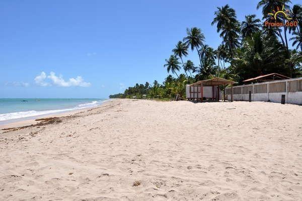 Vendo, troco, terreno na Praia de Maragogi - AL