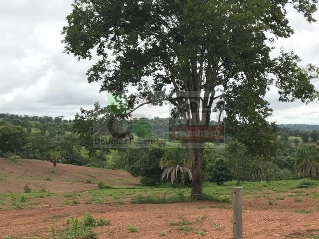 220 Alq. (Plana + Asfalto + Rio). 70 km de Goiânia - Foto 16