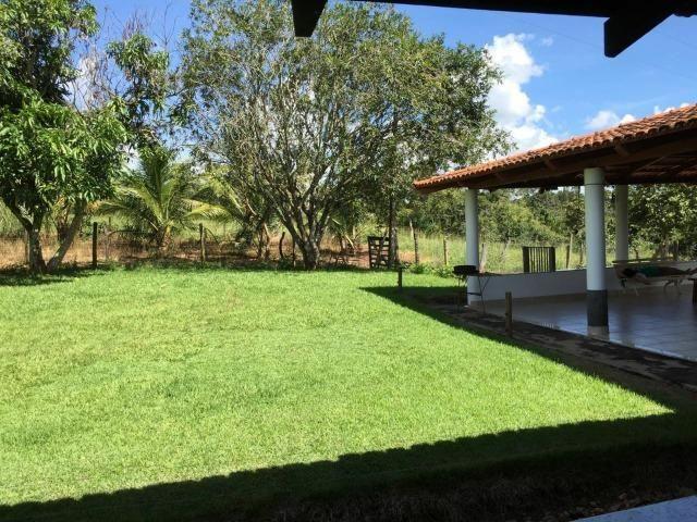 Fazenda 70 Alqueires em Cristianópolis-GO (Lavoura e Gado) - Foto 16