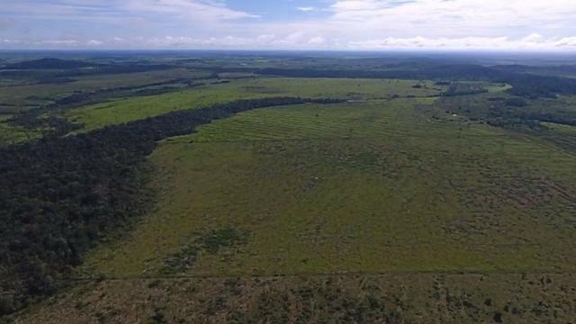 6.100 Há c/ Lavoura em Nova Canna do Norte-MT - Foto 8