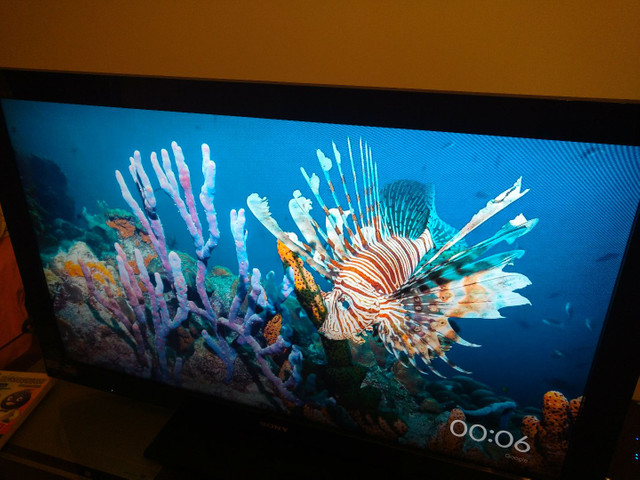 """TV Sony Bravia 40"""" + Chromecast"""