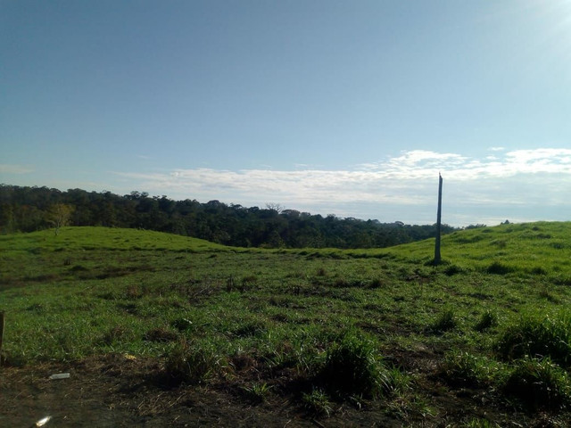 Fazenda  - Foto 15