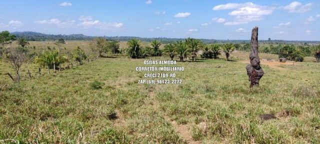 Fazenda em Machadinho - Foto 10