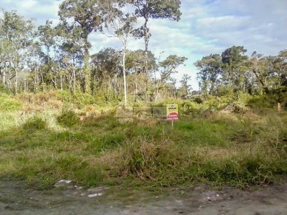 Terreno à venda em Cohapar, Guaratuba cod:125331