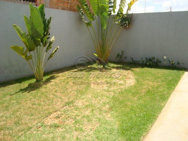 Casa à venda com 2 dormitórios em Jardim america, Jaboticabal cod:V238 - Foto 6