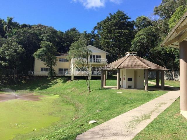 Apartamento para alugar com 2 dormitórios em São luiz, Canela cod:299218 - Foto 19