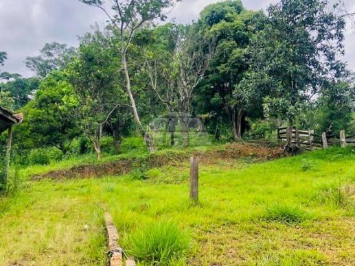 Sítio à venda em Centro, Rio branco do sul cod:155475 - Foto 9