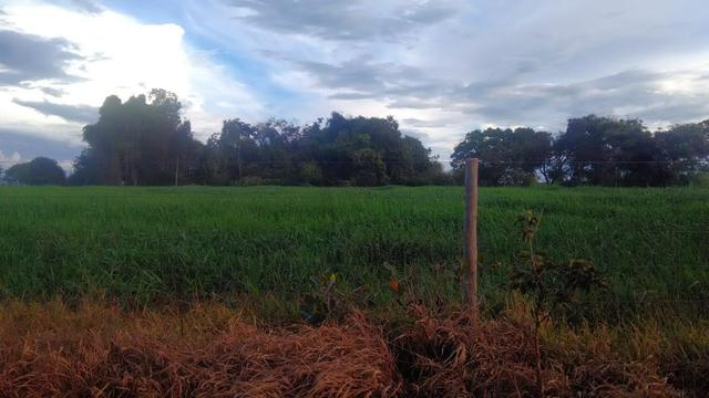 Fazenda terra de cultura município Tupaciguara - Foto 11