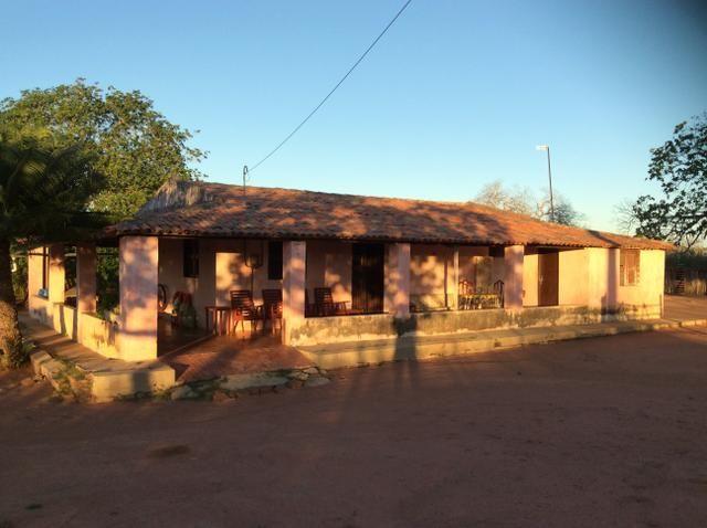 Fazenda em São João do Jaguaribe - Foto 3