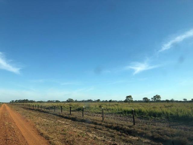 Fazenda Boa de Terra em Cocalinho - MT - Foto 2