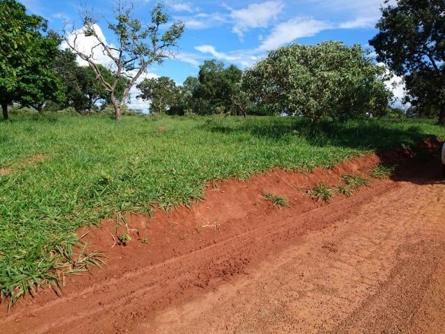 Fazenda 70 Alqueires em Cristianópolis-GO (Lavoura e Gado) - Foto 18
