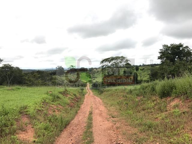 220 Alq. (Plana + Asfalto + Rio). 70 km de Goiânia - Foto 9