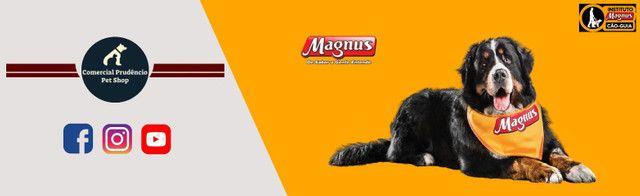 Ração Magnus 15 Kg