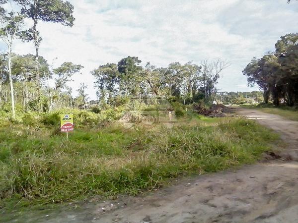 Terreno à venda em Cohapar, Guaratuba cod:125331 - Foto 4
