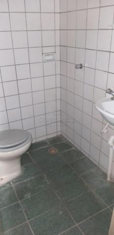 Apartamento para alugar com 5 dormitórios cod:L4658 - Foto 5