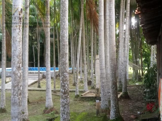 197 - Belíssimo sitio Situado No Jardim Neópolis Venda R$200.000,00 - Foto 8