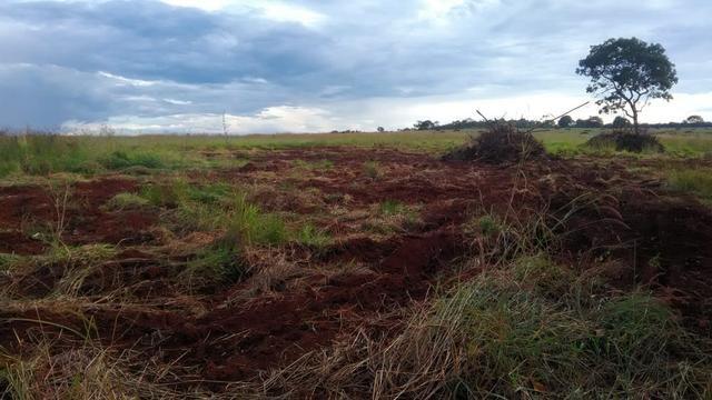 Fazenda terra de cultura município Tupaciguara - Foto 7