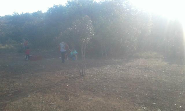 Vendo Lote em taquaruçu a 2,5km de taquaralto - Foto 2