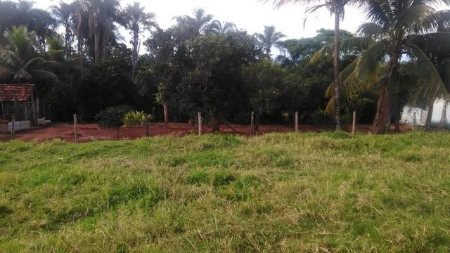 Fazenda terra de cultura município Tupaciguara - Foto 4