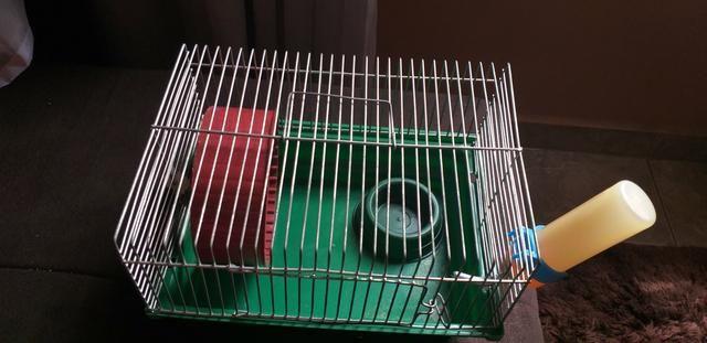 Gaiola para Hamster simples - Foto 2