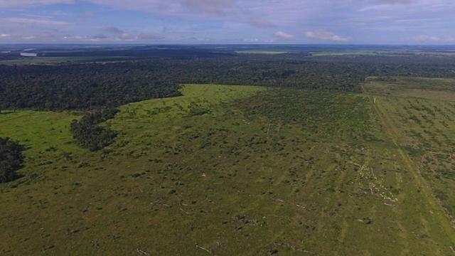 6.100 Há c/ Lavoura em Nova Canna do Norte-MT - Foto 15