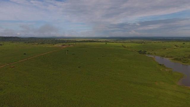 6.100 Há c/ Lavoura em Nova Canna do Norte-MT - Foto 2