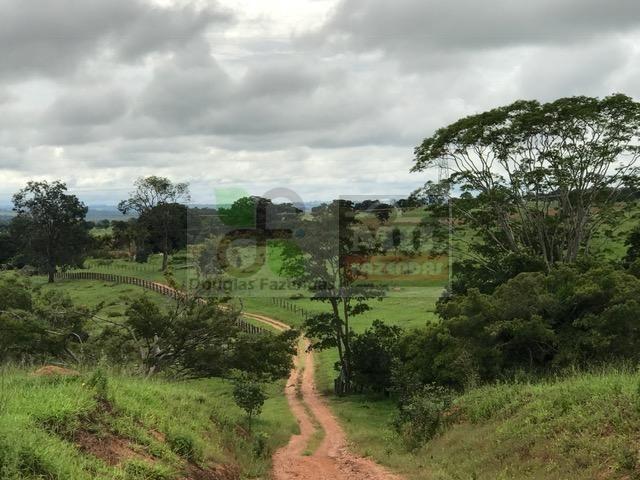 220 Alq. (Plana + Asfalto + Rio). 70 km de Goiânia - Foto 10