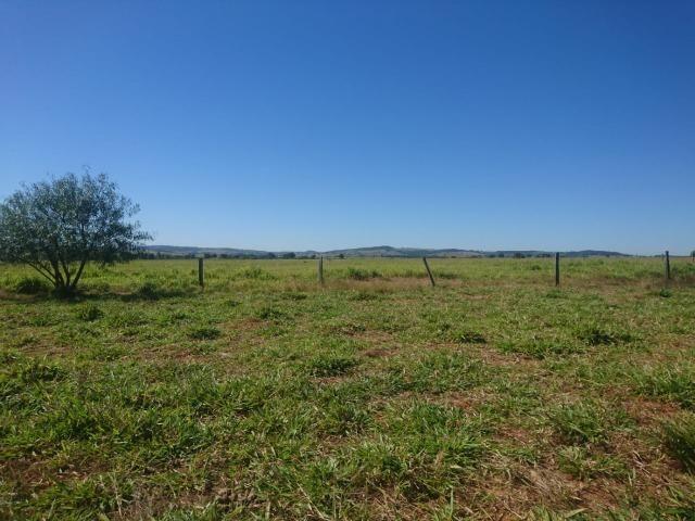 Fazenda Agrícola em Palminopolis-GO. 50 Alq. c/ 30 em Lavoura - Foto 7