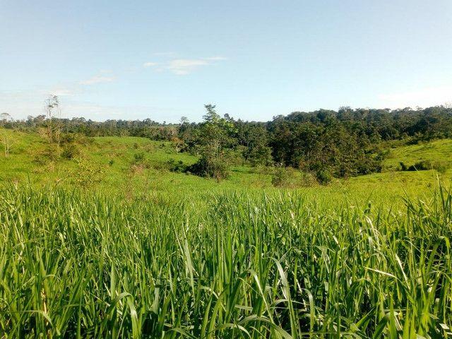 Fazenda  - Foto 14