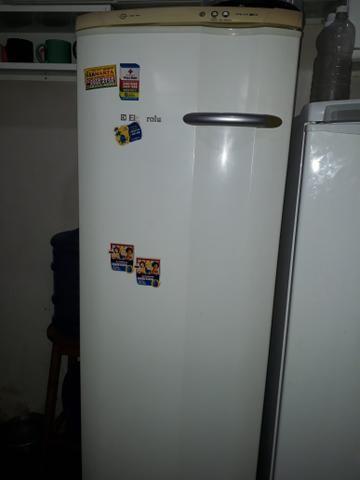 Freezer frost free